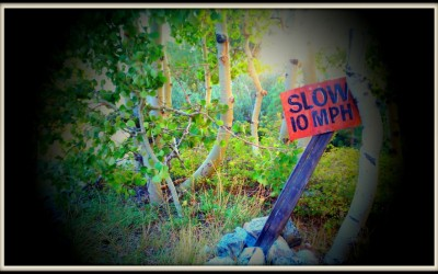 Lundy slow sign